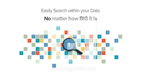 BigParser_SearchEasily