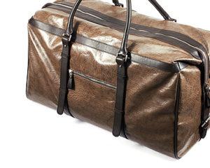 cat_luggage